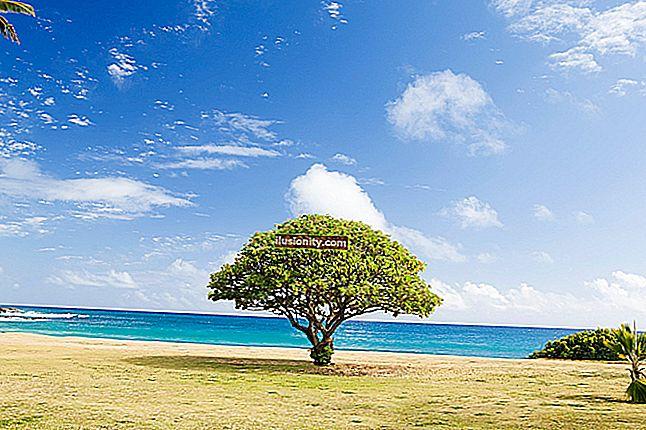 Inserción y rotación del árbol AVL